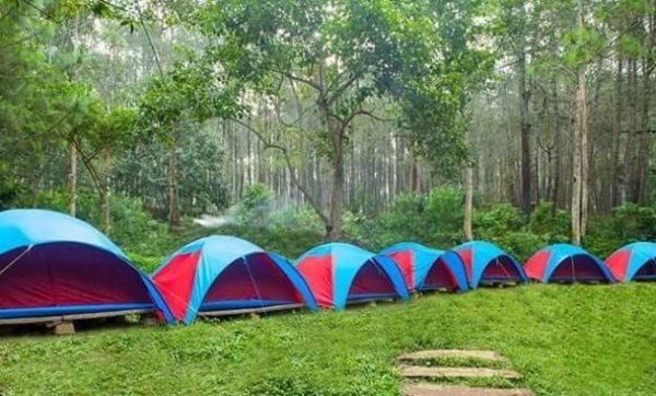 Camping  Grafika Cikole Lembang