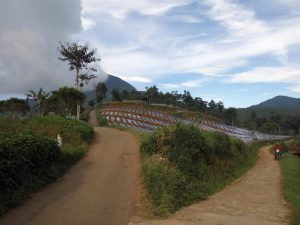 tempat wisata agro di lembang